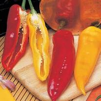 Paprika Corno di toro Mixed