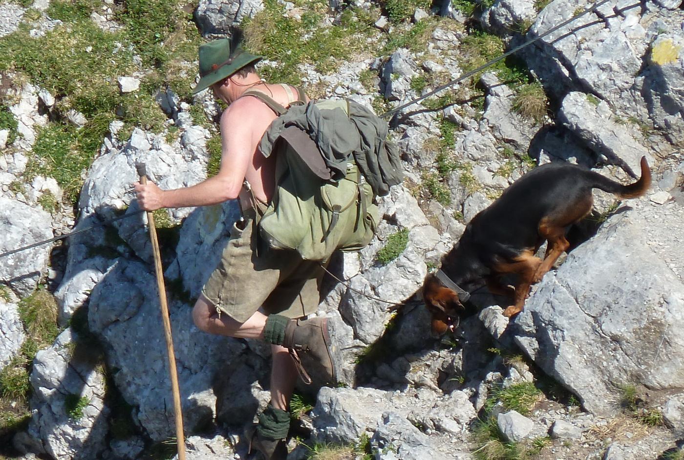 Knulla med en hund