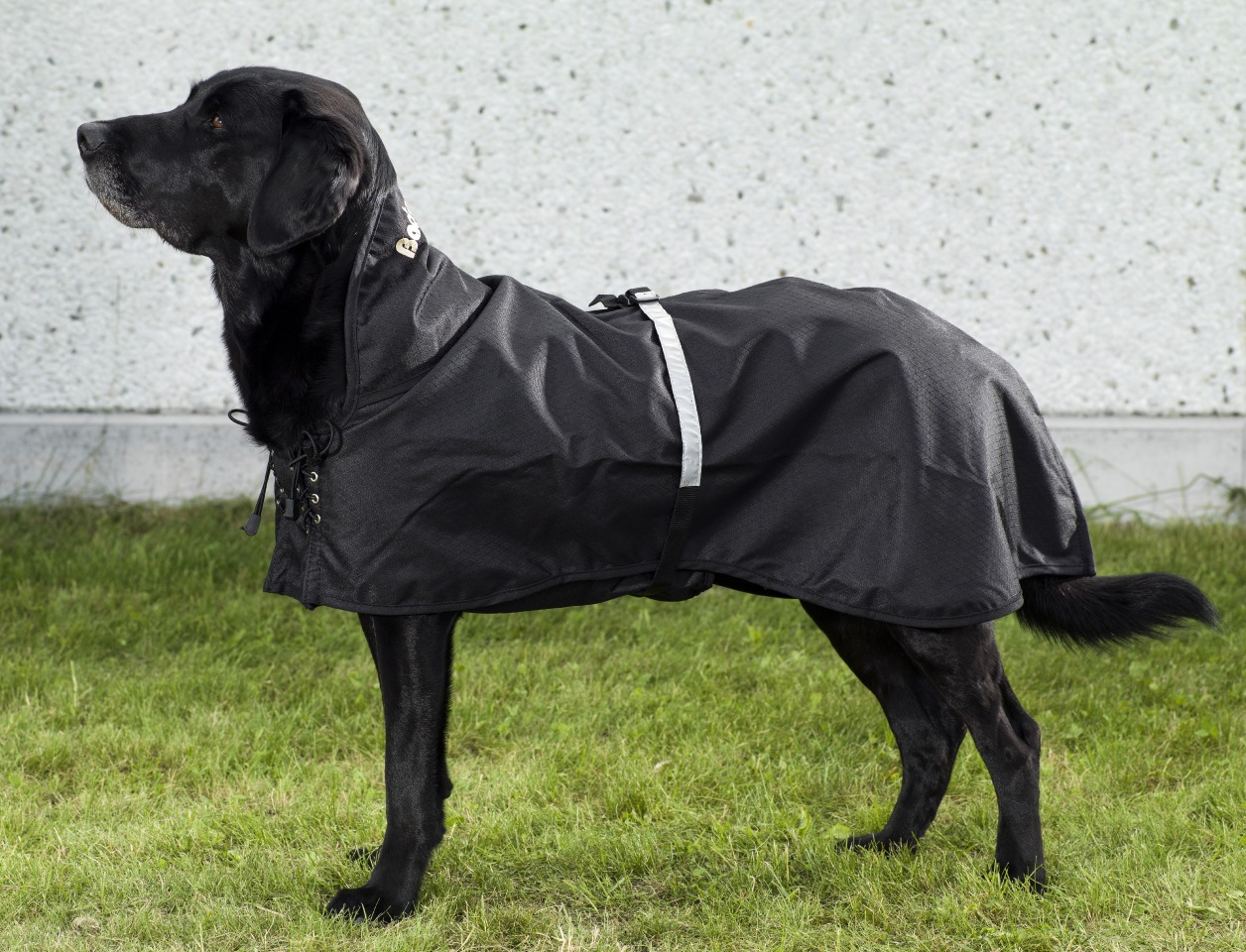 3250-Hundregntäcke