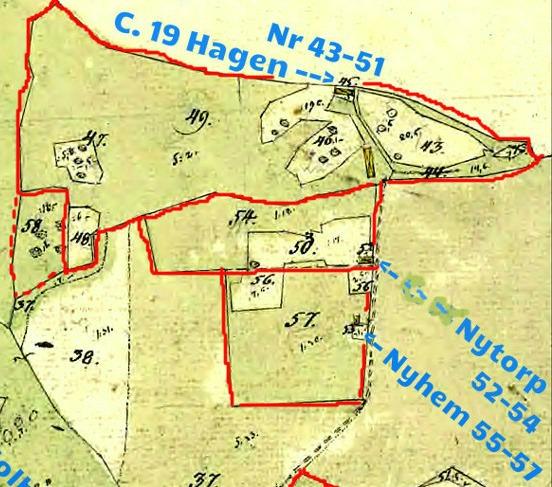 C. 21 a Solberga gård/ Inhysestorpet Nytorp - Pikatomten