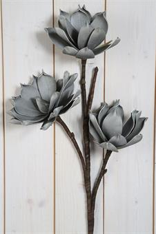 konstväxt lotus