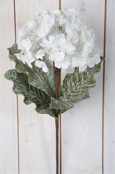 konstväxt-hortensia