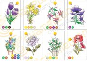 color-card-flowers-colored