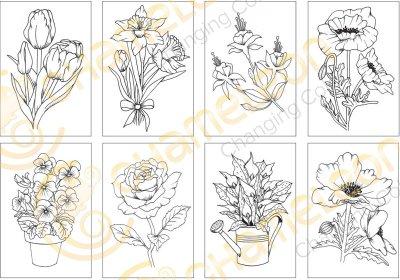 color-card-flowers-sketch