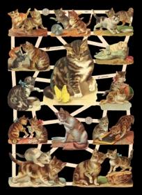 Bokmärke - Katter - Bokmärke - Katter