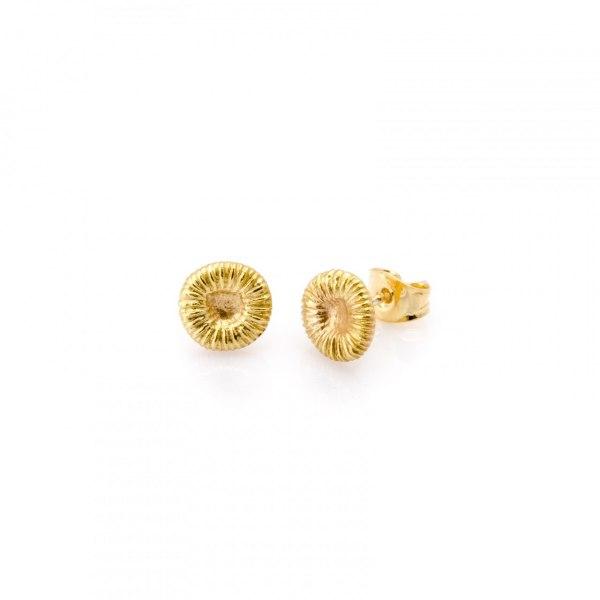 Fossil-örhänge small 8x8 mm, 18k guld