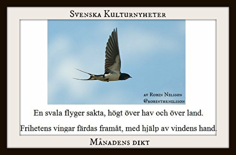 Måndens dikt november 2017 är skriven av Robin Nilsson. Grattis! :)