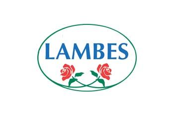 Lambes_logo_ny_2013_mobil