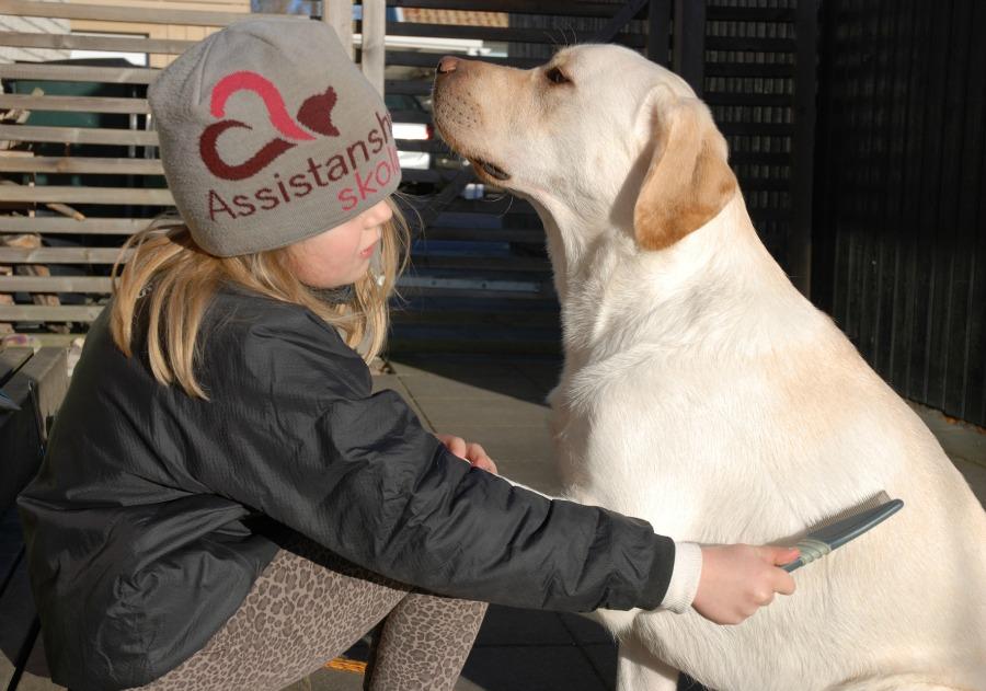 Kompishund - ett sätt att känna sig delaktig.