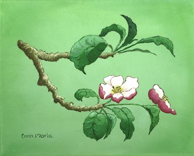 Äppelblom/Apple Blossom - Äppelblom/Apple Blossom