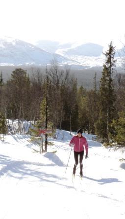 När första snön visar sig kommer längtan att snart få plocka  fram skidorna....