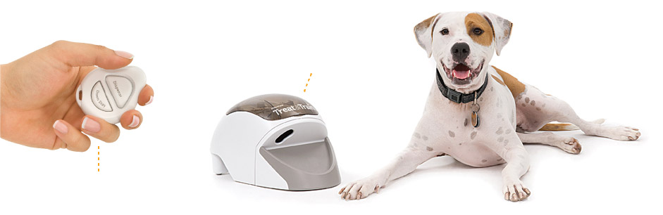 hand-product-dog
