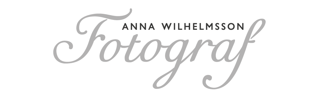 logo mobilwebb