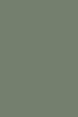 Card Room Green 79 - Estate Emulsion 2 glans -Vägg- och takfärg 2,5L