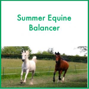 Forageplus Summer Equine Balancer, 5 kg -