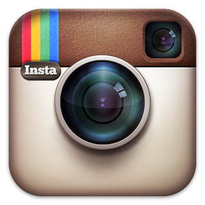 halmstad hundarena instagram