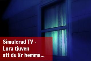 fake_tv
