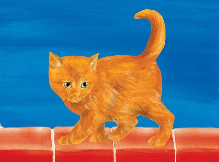 Natural-world-kitten-image