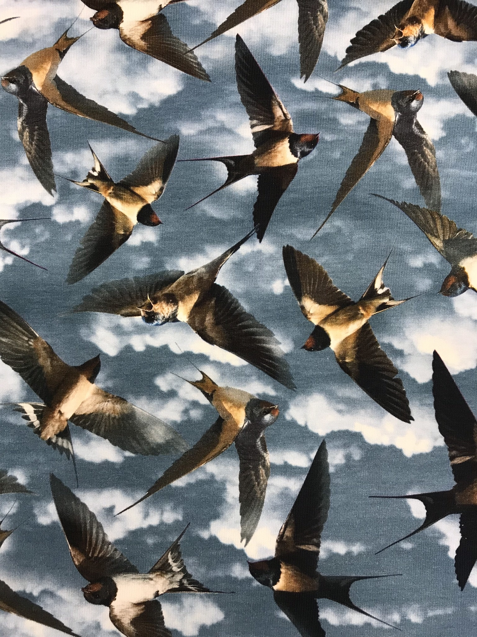 Svalan bomullstrikå metervara fågel blå