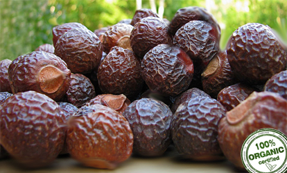Ekostuff Nuts
