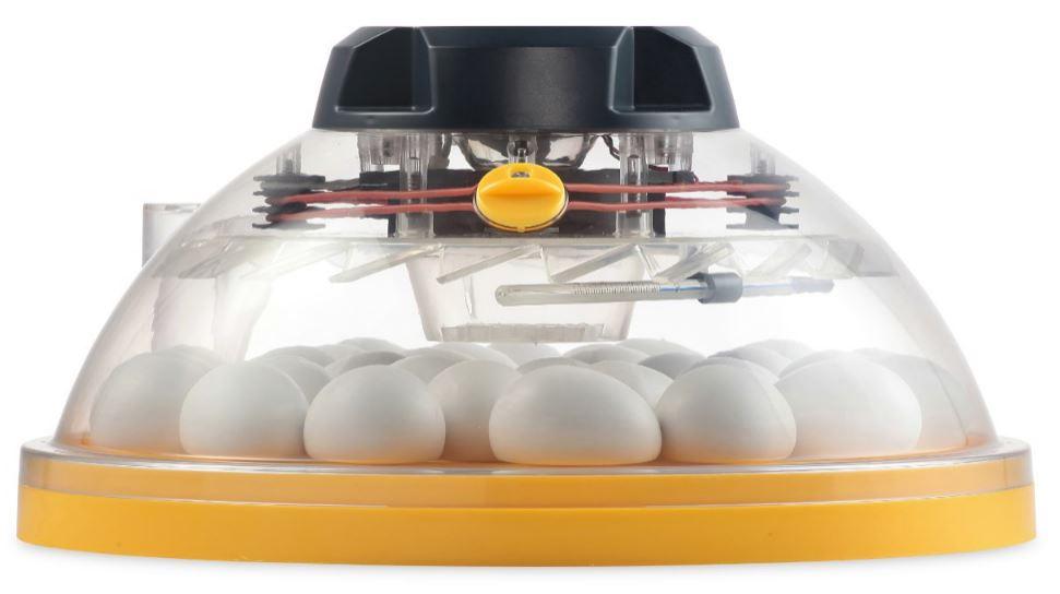 ÄggkläckningsmaskinMaxiEcoside
