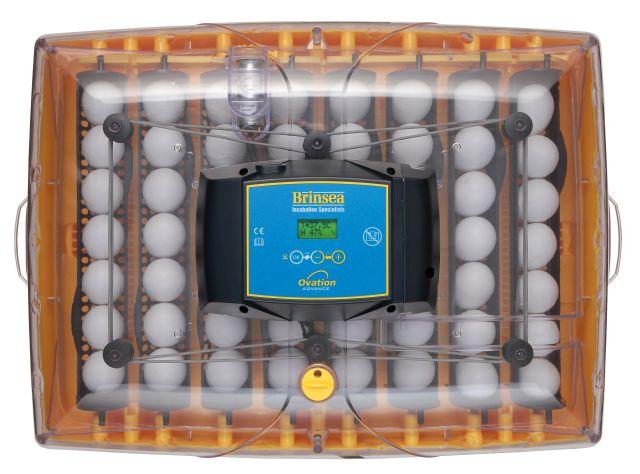 ÄggkläckningsmaskinOvaAdv56top