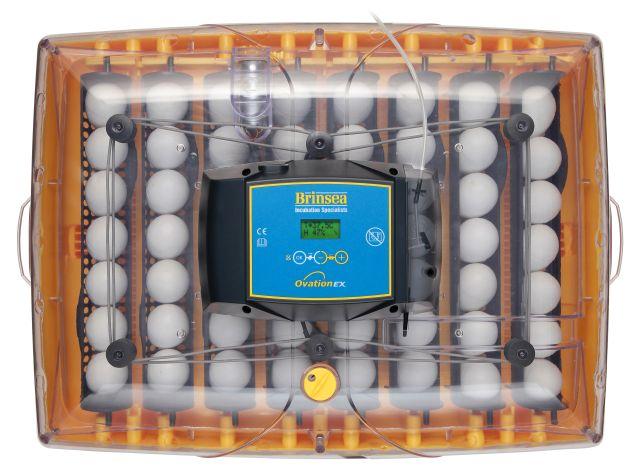 ÄggkläckningsmaskinOvaAdv56topEX