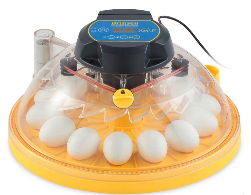 ÄggkläckningsmaskinMaxiAdv