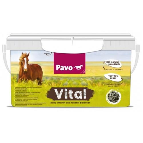 Vital1-500x500