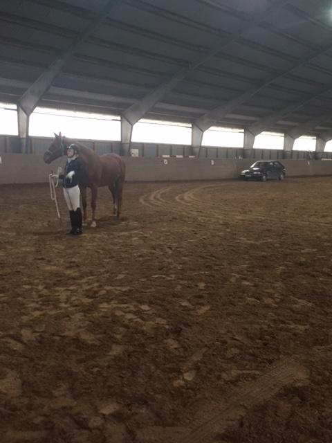 En av hästarna jag visade var rädd för bilar. Visade öite verktyg för att det skulle bli bättre och  till hjälp hade jag Christian som körde in sin bil som vi tränade med