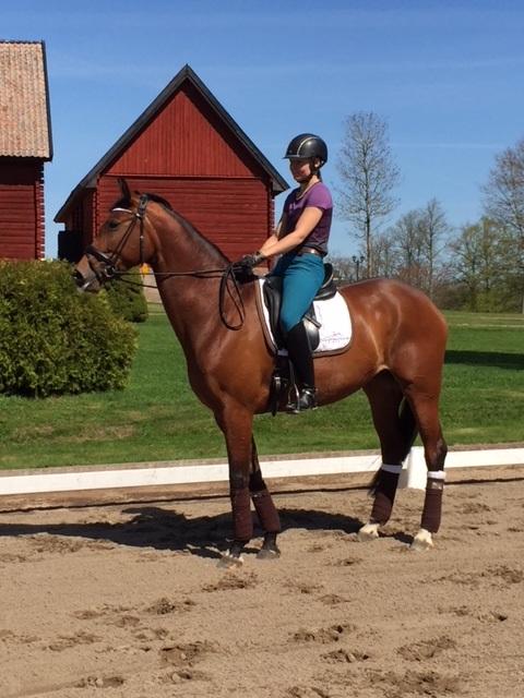 Sorella provar utebanorna på Ericsberg innan ponnysarna kommer:)