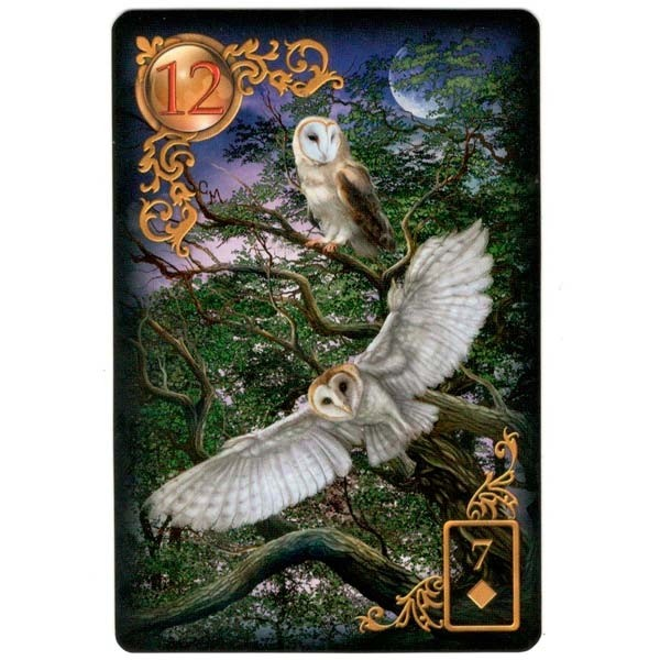 usg0182-gilded-reverie-lenormand-expanded-edition-a-coruja