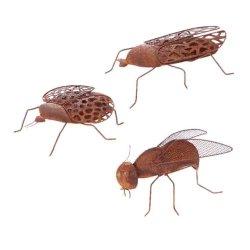 Insekter i rost NYHET -
