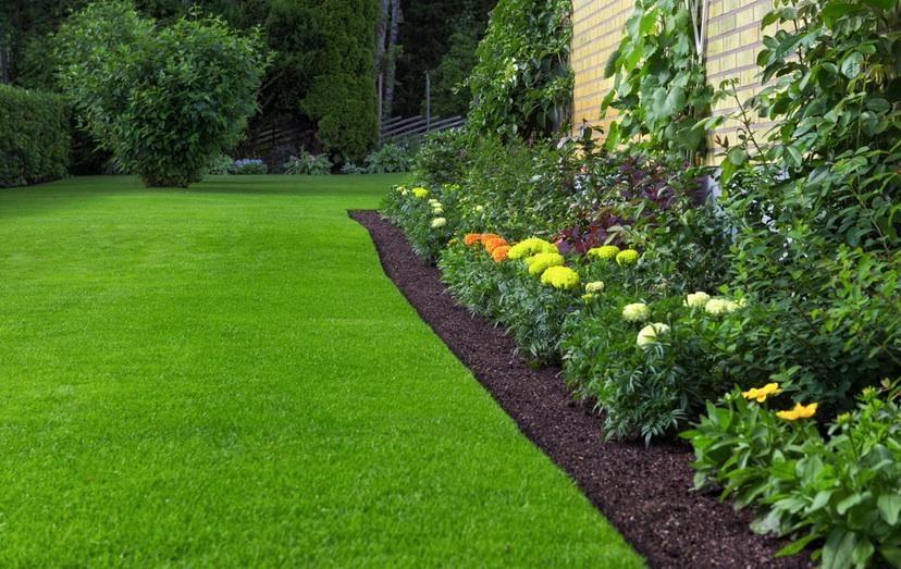 Vacker gräsmatta med rätt gräsjord