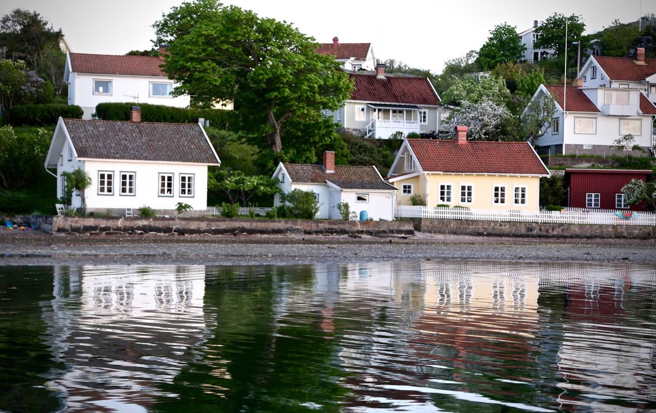 Ostron & tång på Kalvö