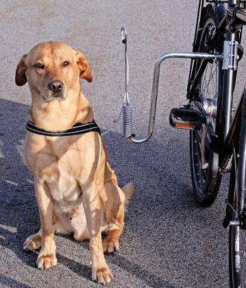 Stabilt cykelfäste