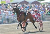 Årets B-tränade häst erhåller ett års förbrukning av foder från vår samarbetspartner Krafft.