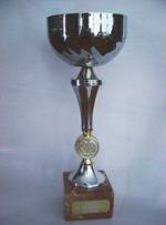 SHAKE™ doftoljor har fått många internationella utmärkelser bl.a. UNESCOs miljöpris Grand Prix.Klicka här för att se alla.
