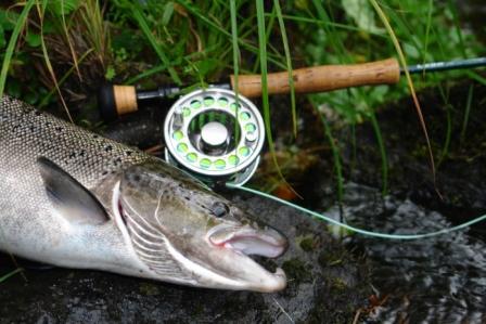 Har du bokat ditt höstfiske?