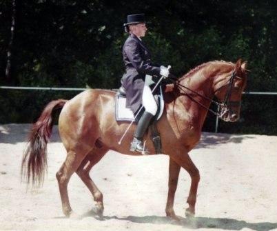 Mannerheim f-1988 e. Key Note - Imperator Foto Robert Nagy