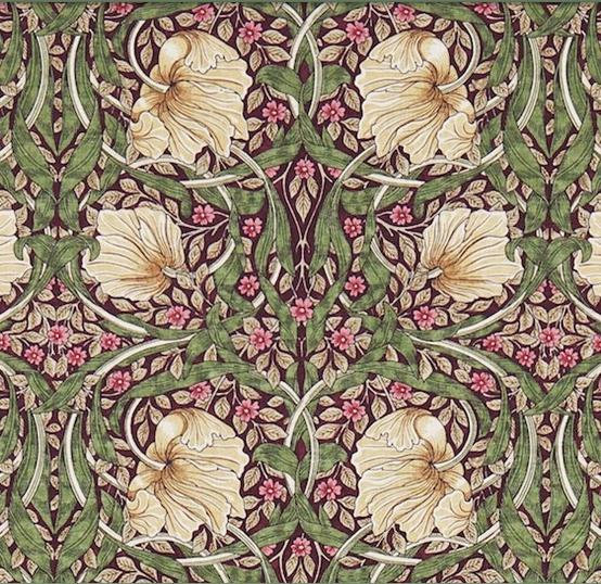 Pimpernel lila L