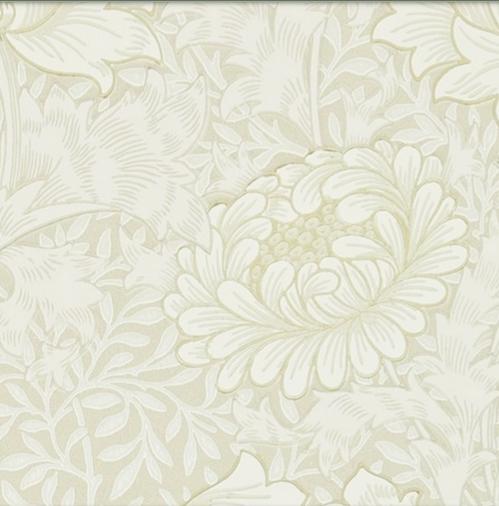 Chrysanthemum vit L