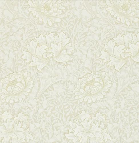 Chrysanthemum vit S