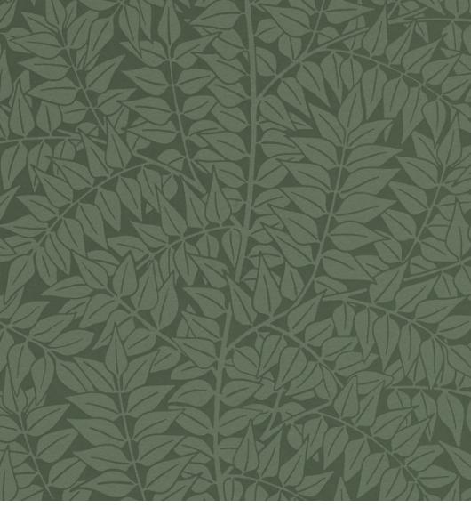 Branch Forest