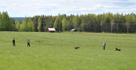 Ifjol var vädret nog så varmt ute på fälten...