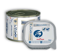 Royal Canin Veterinary Diets Recovery Cats/Dogs - Royal Canin Veterinary Diets Recovery Cats/Dogs - 195 g