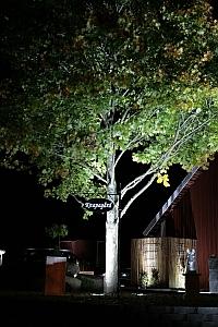 Designlight LED Garden