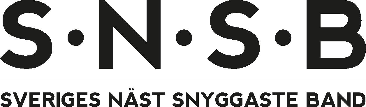 snsb_logga_ny